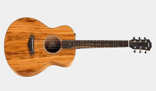 The 5 Best Taylor Guitar Reviews The Musician Picks