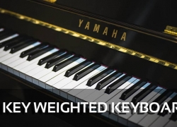 The 5 Best 88 Key Weighted Digital Pianos & Keyboards Reviews
