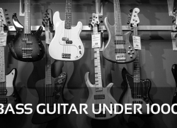 The 5 Best Bass Guitar Under 1000 Reviews