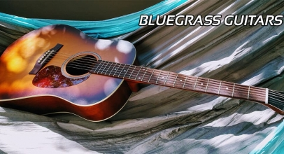The 5 Best Bluegrass Guitars Reviews