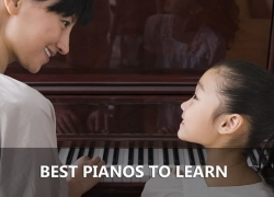 Best Starter Digital Piano and Keyboard for Beginners