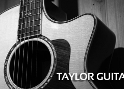 The 5 Best Taylor Guitar Reviews