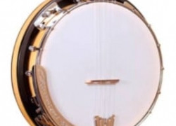 Honest Gold Tone CC-100R Banjo Review
