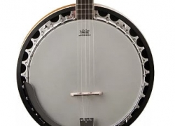 Honest Washburn Americana B9 Banjo Review